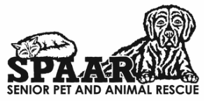 Senior Pet and Animal Rescue